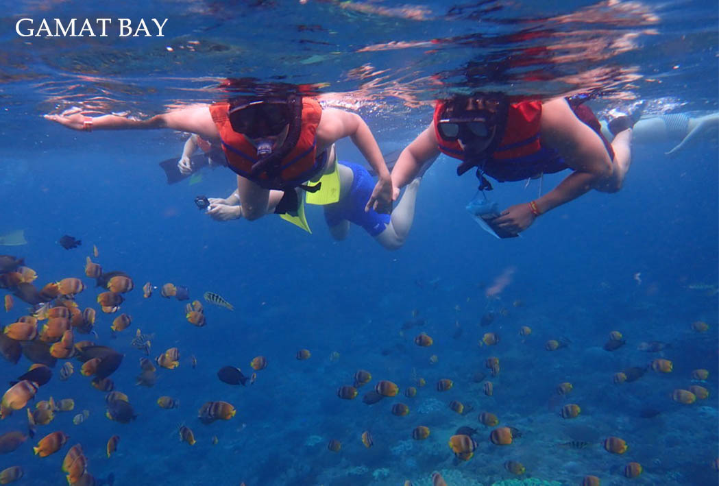 snorkeling is the best thing to do at nusa penida