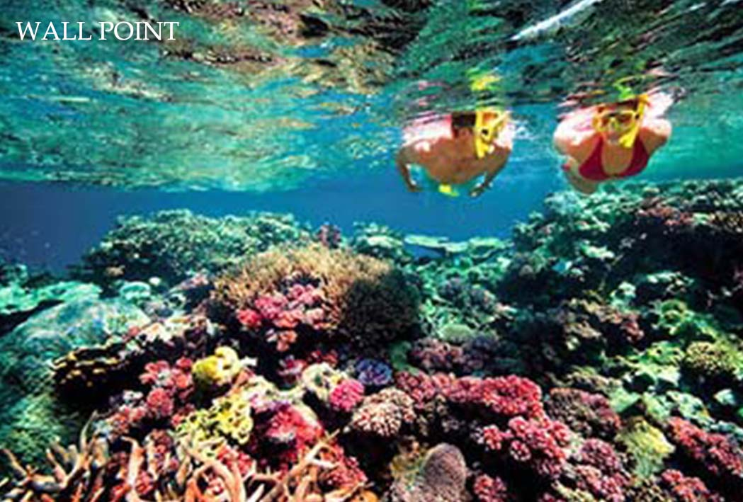 wall point for snorkeling at nusa penida